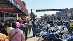 In the thick of things....2015 Sturgis 75th Anniversary