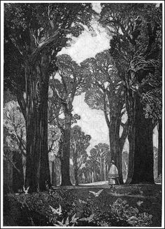 Franklin Booth, (July 1874 – August was an American artist known for his detailed pen-and-ink illustrations. He had a unique illustration styl. Gravure Illustration, Illustration Art, Franklin Booth, Art Blanc, Ink Pen Drawings, Bristol Board, Landscape Drawings, Black And White Illustration, Ink Illustrations