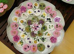 hwajeon Korean Sweets, Korean Dessert, Korean Food, Spicy Recipes, Asian Recipes, Calming Images, Asian Tea, Tea Culture, Plate Art