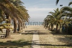 San Benedetto del Tronto, view over the beach