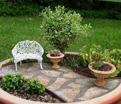 Tu Organizas.: Mini jardins em vasos