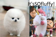 Made by me, I had to for my love of cute fluffy puppies and unicorns :P