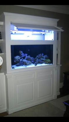 Built in fish tank with cupboard access