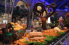 #handpx Fall Garden inside Bellagio, Las Vegas, Nevada.