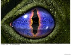 Fred Gambino dragon_eye