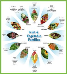 """Click on image for """"How to make green smoothies"""" - nice food family chart - fyi stevia belongs in the Sunflower family"""