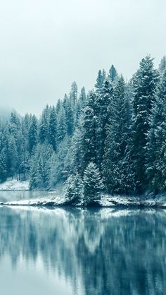 Snow Pines Winter Lake iOS7 iPhone 5 Wallpaper #iPhone #wallpaper