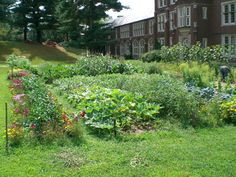 This garden can help teach sustainable gardening practices as we learn about crop rotating, managing pests without chemicals, and keeping a compost pile to recycle the nutrients. During the summer, we could sell them at the Farmers' Market in our parking lot to continue upgrading and enhancing our garden. Also, we could donate some produce to needy families in our community.  #diggingdeeper