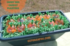 Candy Egg Carrot Planters