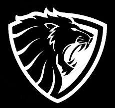 Logo Desing, Vector Design, Logo Lion, Tiger Logo, Eagle Icon, Lion Sketch, Panther Logo, Security Logo, Lion Images