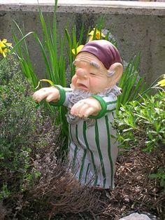 sleepwalking gnome...omg!! cute!