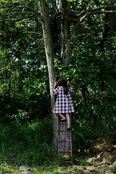 seeking sanctuary among the trees....