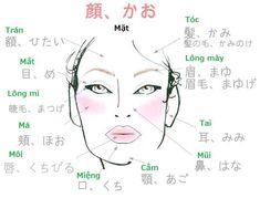 Direct from Tokyo: Japanese learning resources and culture Japanese Face, Study Japanese, Japanese Culture, Japanese Phrases, Japanese Words, Japanese Language Learning, Learning Japanese, Japanese Characters, Nihon
