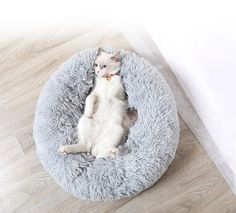 Round Cat Bed Best Pet Dog Bed for Dogs Basket Pet Products Cushion Cat Pet Bed Mat Cat House Animals Sofa House Soft Long Plush Best Pet Dogs, Round Dog Bed, Fluffy Bedding, Pet Kennels, Bed Mats, Comfy Bed, Cool Beds, Large Dogs, Cat Love
