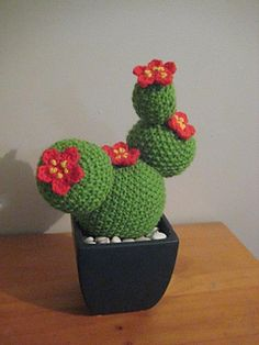 When my sister and 21 year old niece were visiting our island from the Mainland, they saw a knitted cactus in a gallery for $70!! Admittedly, it was about 12 inches tall and in a nice pot, but $70?...