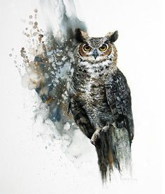 Water color owl