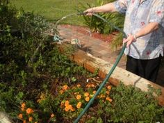 Residents love to be engaged in therapeutic horticultural acitivies