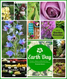 #EarthDayProjects with The Garden Charmers...Magic Touch & Her Gardens