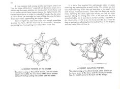 """A Correct Position at the Canter and Gallop, from """"Learning to Ride, Hunt, and Show"""" Horse Riding Tips, Horse Tips, Horse Exercises, Horse Camp, Funny Horses, Medical Facts, Horse Training, Horseback Riding, Equestrian"""