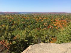Algonquin Provincial Park, is the oldest provincial park in Canada. It offers many hiking trails with breathtaking views, like Lookout Trail, along Highway Algonquin Park, Recreational Activities, Hiking Trails, Trip Planning, Ontario, To Go, Old Things, Canada, Colour