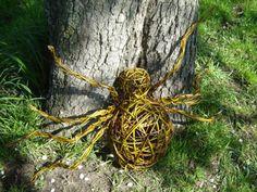 Workshop Wilgentenen Vlechten: araignée
