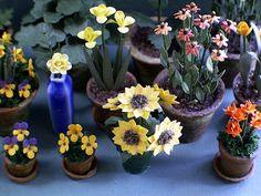The Miniature Garden