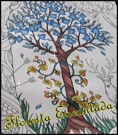Floresta Encantada - degradê no tronco da árvore | Luciana de Queiróz