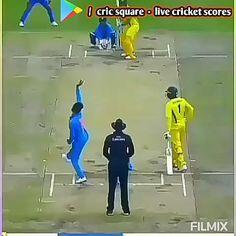 Cricket Videos, Cricket Score, Live Cricket, Cricket Match, Tiger Video, Ms Dhoni Photos, Cricket Quotes, Virat Kohli Wallpapers, India Cricket Team