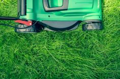 The Two Best Ways To Repair Dead Spots In Your Lawn