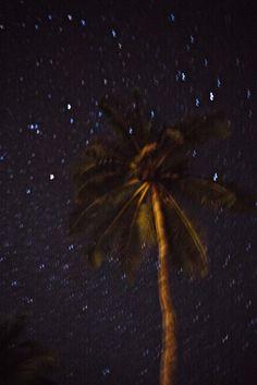Sri Lankan stars