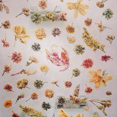 Anicka Yi's tempura flowers #frieze #frieze2013 #friezelondon #art