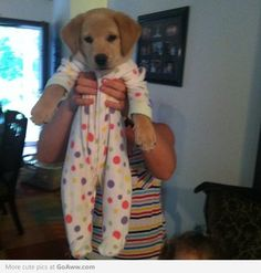 Cute puppy in his pjs!