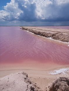 Beautiful Pink salt lakes in Rio Lagartos, Mexico