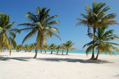 Saona Island, Dominican Republic - Little trip during the holidays