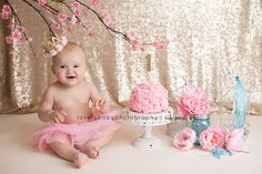 Baby Girl One Year Cake Smash Gold, Pink and Tiffany Blue Lovely Baby Photography