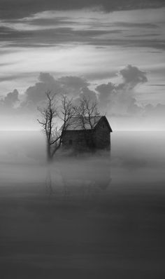 Black and White My favorite photo #house #home