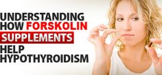 Research Program Highlights Forskolin Improves Conventional Hypothyroidism Therapy. Clinical study reveals additional positive benefits of Forskolin besides weight loss.