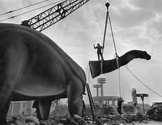1965 - New York World's Fair, Brontosaurus dismantling operation on the Sinclair Dinoland Pavilion