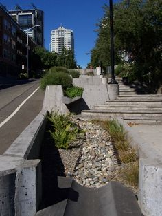 local ecologist: Amenity potential of stormwater management