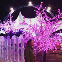Mañana ✨jueves os contamos en nuestro blog otro planazo navideño ❤️🎄que hemos hecho y os recomendamos!! 🎪❄️. #circodehielo #ProductoresdeSonrisas #planesdivertidosniños #MadridconM #plandivertidopadres #tiempodeNavidad #ChristmasTime #chilhoodunplugged #childhoodmemories
