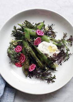 // Grilled Fava Burrata Salad