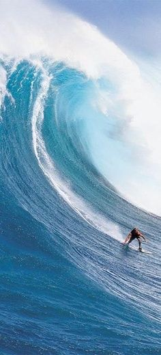 A Pro Surfing, Don't try this at home. And avoid the chafe from board shorts in Turq SwimBriefs. www.turqswim.com