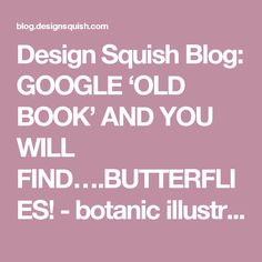 Design Squish Blog: GOOGLE 'OLD BOOK' AND YOU WILL FIND….BUTTERFLIES! - botanic illustration, moths, sustainable lifestyle, do-it-yourself, creative environmental options, craft, organics, gardening, planting, flower pots, reusing, old and vintage, nature, environmental news, recycling tips, brooklyn, ditmas park,