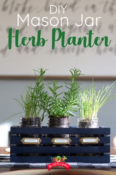 DIY Mason Jar Herb Planter : Grow fresh and delicious herbs indoors with the DIY Mason Jar Herb Garden Planter. This quick and easy mason jar project will give you the perfect springtime table decor and fresh herbs as well! via Herb Garden Mason Jar Herbs, Mason Jar Herb Garden, Pot Mason Diy, Herb Garden Planter, Mason Jar Planter, Mason Jars, Diy Herb Garden, Herbs Garden, Garden Paving