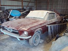 1967 Mustang Fastback barn find! Oh my god, my dream car, right there. I would pass out if i stumbled upon this