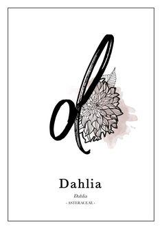 """© Silk&Paper - """"Dahlia"""" - Alphabet Flower - Poster print art"""