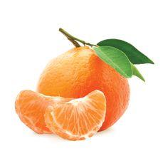 Mandarin Zest - New Site Mandarine Recipes, Organic Vegetable Seeds, Fruits Photos, Fruit Picture, Orange Aesthetic, Fruit Painting, Orange Design, Orange You Glad, Orange Fruit