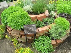 Spiral herb garden - water the top and it trickles down to the bottom