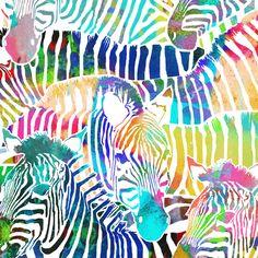 Zebra Rainbow (Large Scale) fabric by rubydoor on Spoonflower - custom fabric