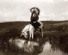 You are viewing an impressive image of Valley Rosebud, a Cheyenne Chief. It was taken in 1905 by Edward S. Curtis.    The picture shows a Cheyenne Indian Warrior, wearing a feather head dress, on horseback. The horse is drinking water from a small stream    We have created this collection of pictures primarily to serve as an easy to access educational tool. Contact curator@old-picture.com.    Image ID# 702B2848 #GeorgeTupak